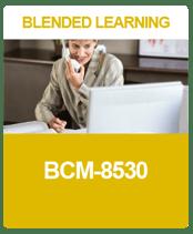 IC_BL-A-5_BCM8530