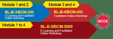 2Phase BL-B-5 BCM-5000